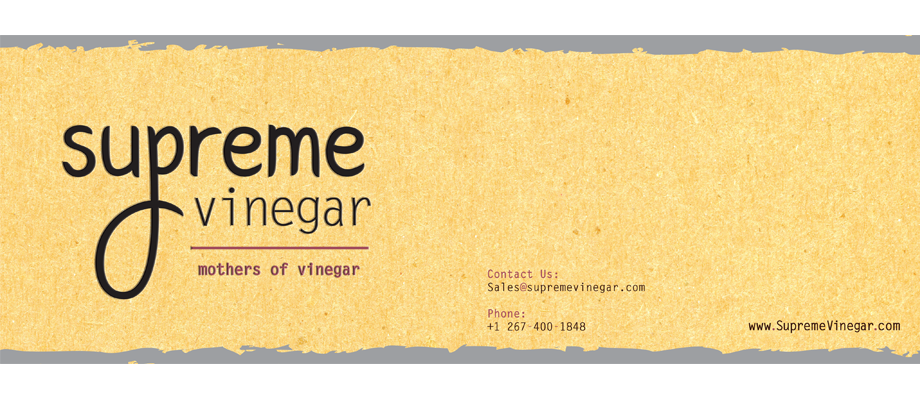 That Creative Guy. Supreme Vinegar Brochure Design. brand expert. graphic design. web design in mississippi.